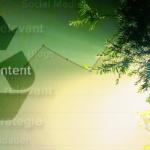 Evergreen Content: 7 Ideen für Inhalte ohne Ablaufdatum