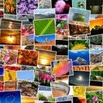 Bilder-Seo – Besseres Ranking durch Bildoptimierung